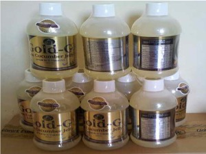 jelly-gamat-gold-g-obat-tradisional-asam-urat